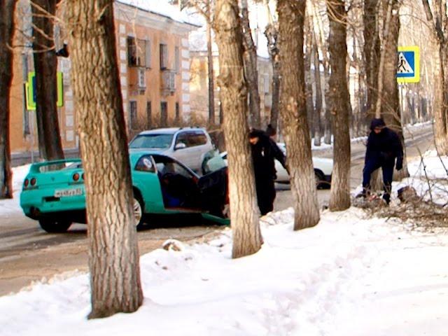Автомобилю помешало дерево