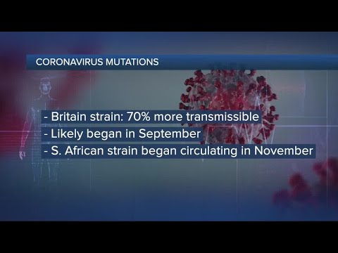 The Coronavirus Is Mutating. What Does That Mean for Us?
