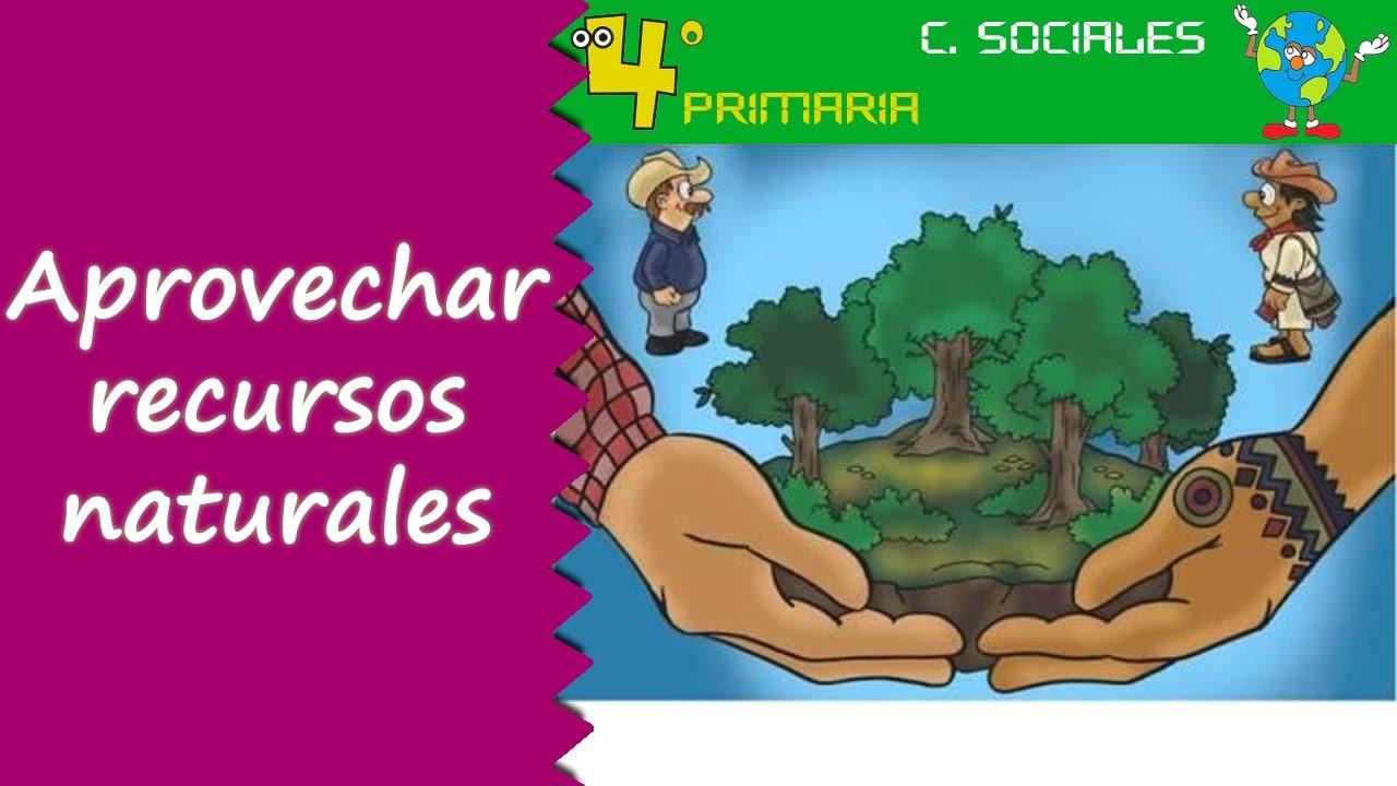 Ciencias Sociales. 4º Primaria. Tema 4. Aprovechamiento de los recursos naturales