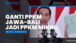 Wiki Trends - Setelah Dikritik, Jokowi Ganti PPKM Jawa-Bali Menjadi PPKM Skala Mikro