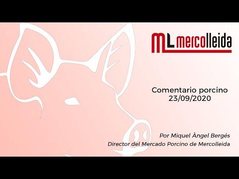 Comentario mercado porcino - 23/09/2020