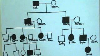 FDSCI Family Pedigree Project