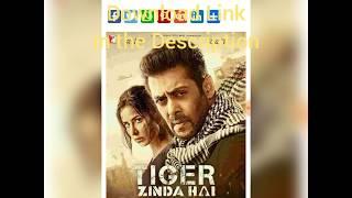 tiger zinda hai 1080p hd movie free download
