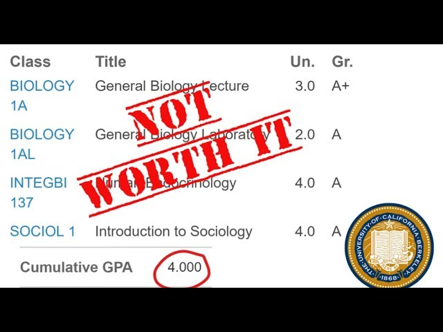 Why My 4.0 at UC Berkeley Actually Hurt Me