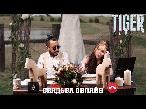 """Tiger Family """"Свадьба-Онлайн"""" (Official Video)"""