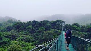 Monteverde Cloud Forest Biological Preserve, Costa Rica