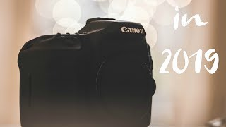 Canon 40D Review, in 2019