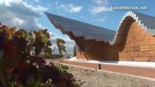 preview picture of video 'RIOJA ALAVESA - Bodegas, vendimia, vinos, turismo, visitas. Ruta del vino - Winecellar vineyards'