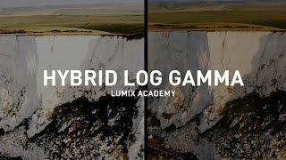 Panasonic Lumix Academy: ¿Qué es Hybrid Log Gamma? anuncio