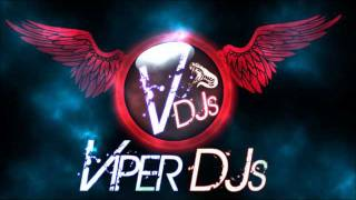Bhangra Mix Part 2 | Viper DJs