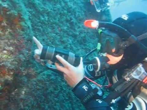 Wrack Lina, Insel Cres, Diving Cres -Nicole, Mirko u. Ralle, Wrack der Lina,Cres,Kroatien