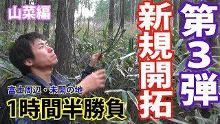 【富士周辺】山菜採り 新規開拓編