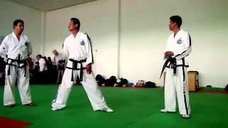 Dan-Gun. Taekwon-do ITF. Seminar 2012.