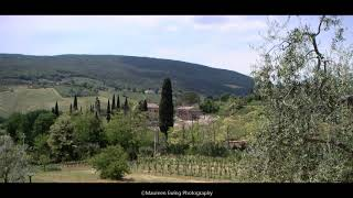Olive Groves and 30
