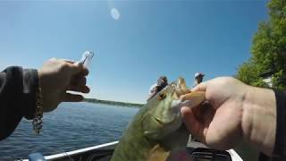 Lake Champlain Smallmouth - Where to Stay and Fish!