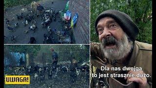 """Żyją z setką psów! """"Może dojść do tragedii!"""" (UWAGA! TVN)"""