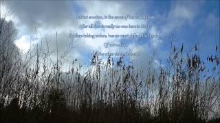Yazoo - Mr Blue with Lyrics HQ
