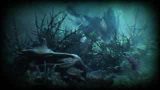 downy「海の静寂」 Official Music Video