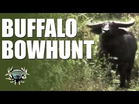 Headhunter Chronicles – Bow hunting in Australia and Papua New Guinea