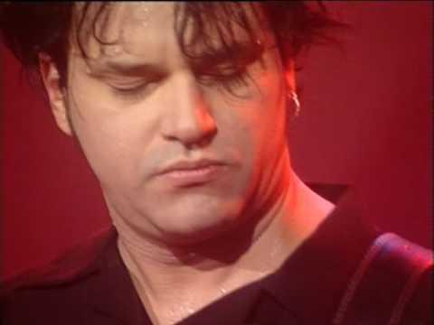Los 7 Delfines video Neverdunozin Nunca hagas nada - CM Vivo 1999