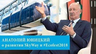 Интервью накануне ЭкоФеста-2018