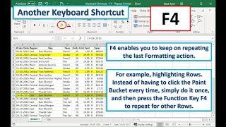 Keyboard Shortcut (F4) – Format Repeater