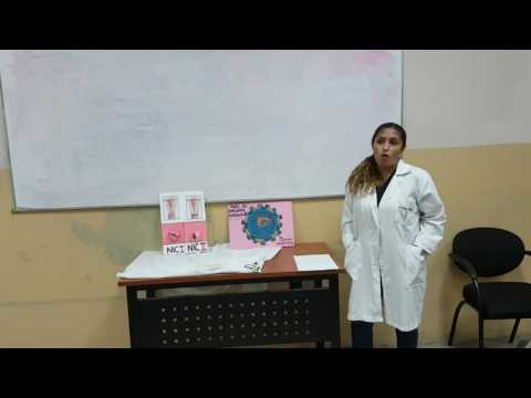 Cervical cancer hpv treatment