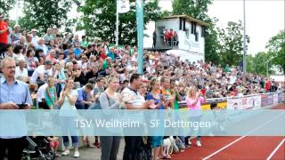 preview picture of video 'Der Teckbotenpokal 2014 in Weilheim/Teck'