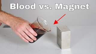 Giant Neodymium Monster Magnet Vs Blood! It's Attracted!