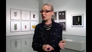 Ольга Свиблова о том, что такое искусство и как распознать шедевр