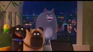 Evcil Hayvanların Gizli Yaşamı 2 Türkçe Dublajlı İkinci Fragman
