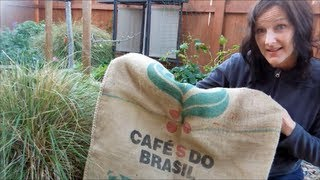 Grow Vegetables And Fruit In Burlap Sacks | Many Plants Love These Bags