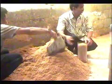 Video PROSES AWAL BUDIDAYA JAMUR TIRAM - Menyiapkan Media Tanam.