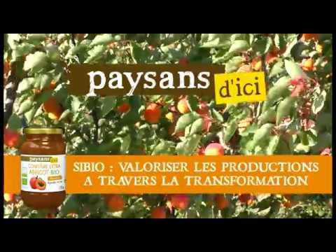 Commerce équitable en France - soutenir la tradition fruitière du Roussillon