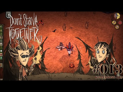 Don't Starve Together #13 – Nacht unter Sternenhimmel★ Speedy plays Don't Starve Together [HD|60FPS]