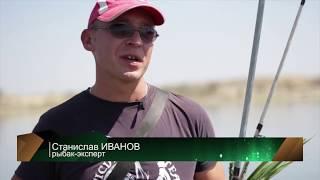 Kazakhstan fishing Рыбалка на Белого амура