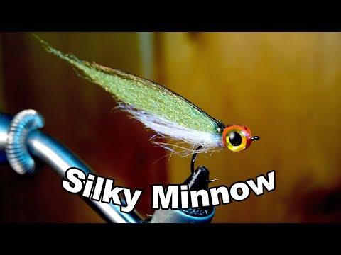 Silky Minnow