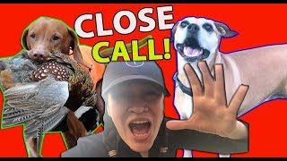 THIS HUNTING DOG HUNTS HOPE!