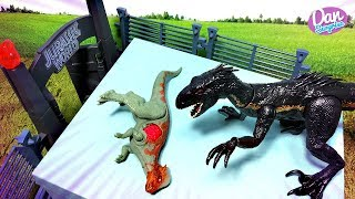 JURASSIC WORLD BATTLE! Dinosaur Toys Fight T-Rex vs Carnotaurus & Indoraptor vs Allosaurus