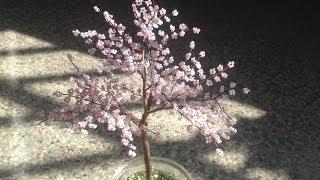 SAKURA. Die japanische Kirschblüte. TUTORIAL. Bäume aus Perlen. Anna's Perlen