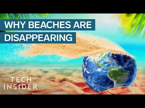 Why are the World's Beaches Disappearing?