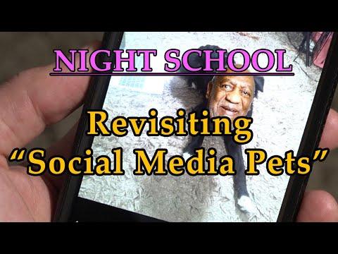 """Night School: """"Revisiting Social Media Pets"""""""
