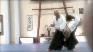 preview picture of video 'Aiki Nomad Seminar - Uster 2012 (Ita)'