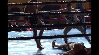 Парень на ринге нереально круто вырубил противника ...MMA/BOXING
