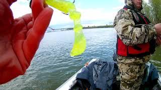 Рыбалка в новосибирске летом на спиннинг