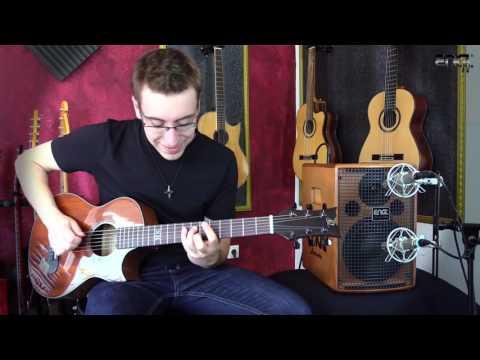 ENGL A101 Kombo pro akustické nástroje