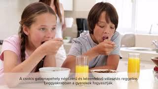 Desszert reggelire? Csokis gabonapehely teszt eredménye – 2021