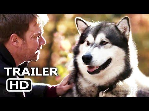Trailer Hero Dog: The Journey Home