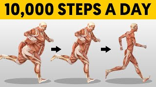 What 10,000 Steps a Day Does To Your Body