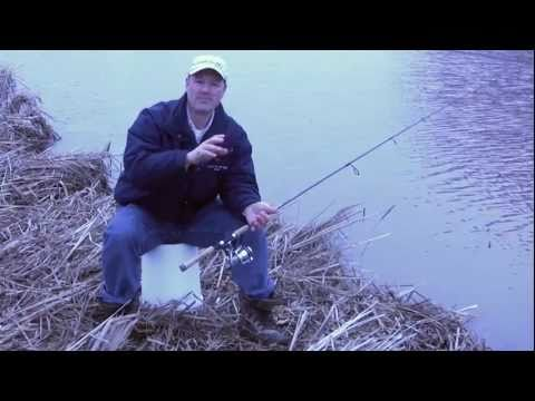 Guide til fiskeri efter dværgmaller